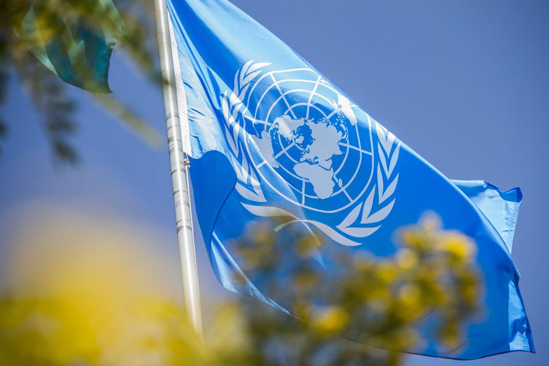 """联合国将6月3日定为""""世界自行车日"""""""