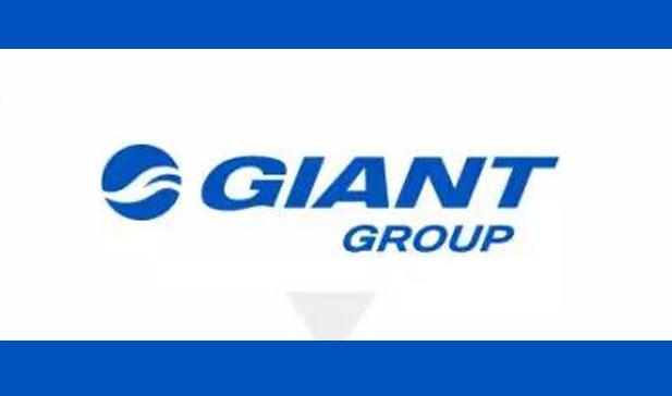 巨大发表GIANT GROUP集团品牌 重整品牌架构