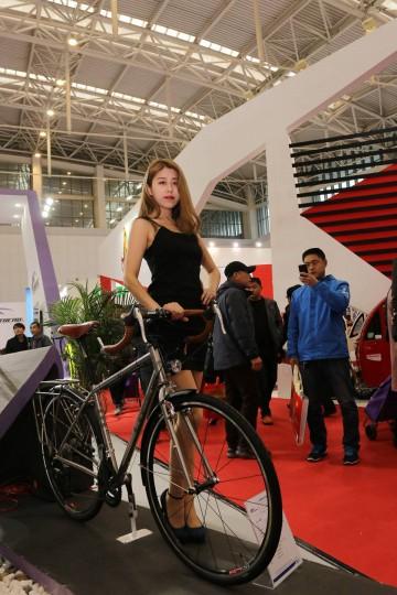 第17届中国北方国际自行车电动车展览会首日展