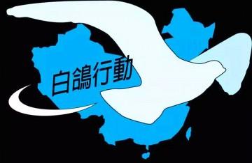 白鸽行动2017厂商联合产品(华东区)发布会