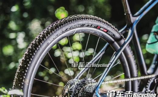 XC爱好者新选择—Arisun Mount Cook轮胎实测